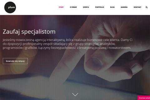 Współpraca z Plum – Web Solutions